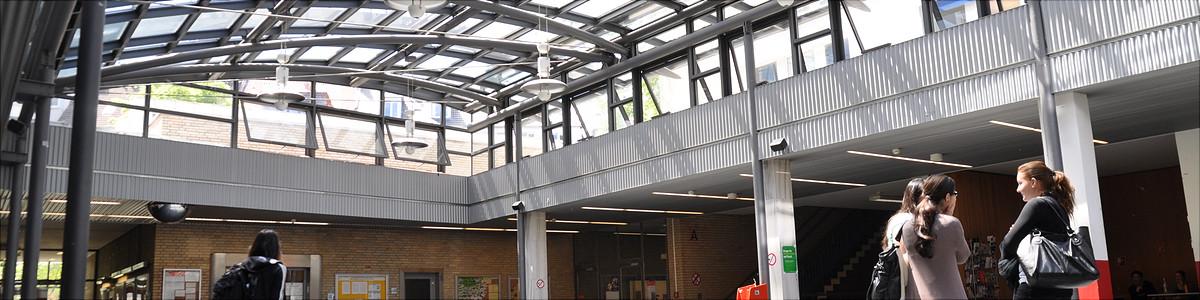 M sc interdisziplin re public und nonprofit studien for Uni hamburg studiengange